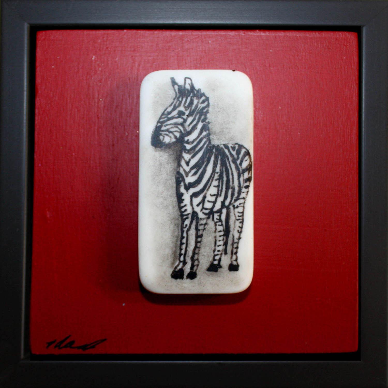 zebra gazing